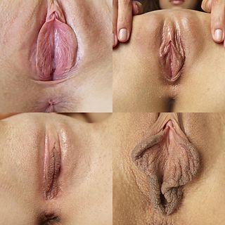 Opening Venus