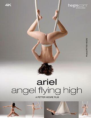 Ariel Angel Flying High