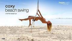 Coxy Beach Swing