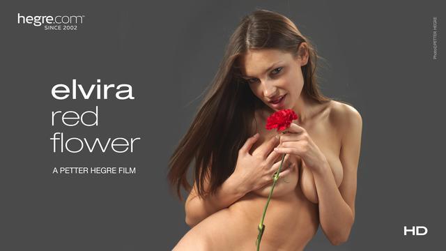 Elvira Red Flower
