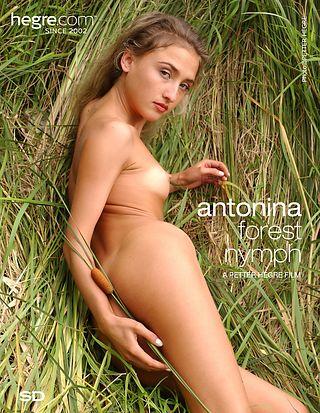 Antonina Ninfa del Bosque