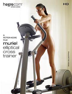 Muriel Elliptical Cross Trainer