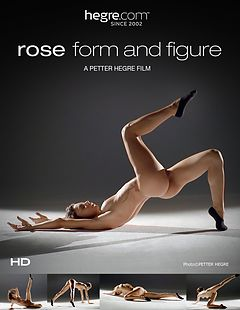 Rose Form And Figure