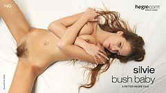 Silvie Bush Baby