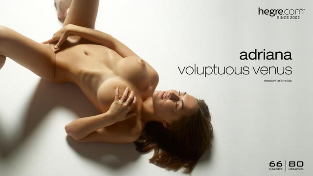 Adriana Wollüstige Venus