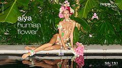 Alya human flower
