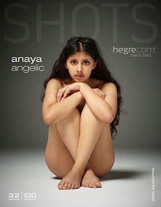 Anaya angélique