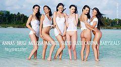 Anna S Brigi Melissa Muriel Suzie Suzie Carina crías de foca
