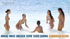 Anna S Brigi Melissa Suzie Suzie Carina Mar Caribe