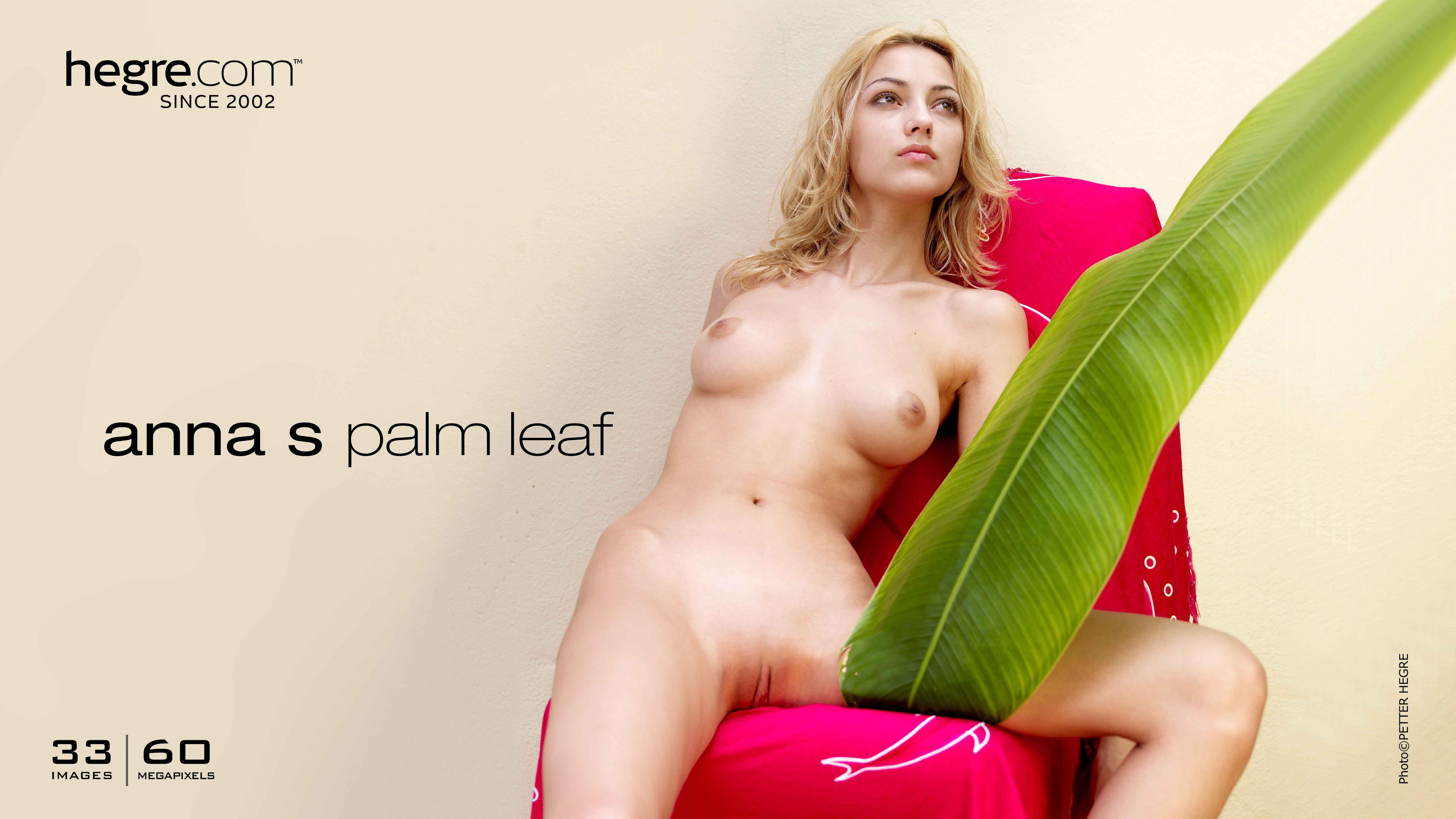 Anna S palm leaf