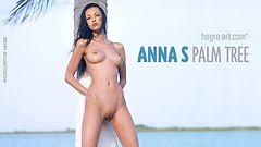 Anna S palmera