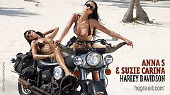 Anna S Suzie Carina Harley Davidson