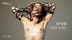 Anya wild web