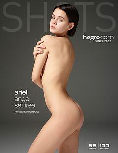 Ariel angel set free
