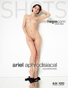 Ariel aphrodisisch