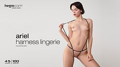 Ariel harness lingerie