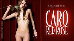 Caro rosa roja