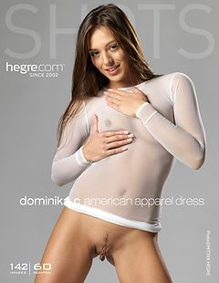 Dominika C American apparel dress