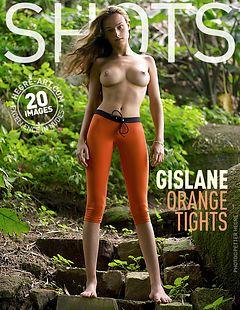 Gislane orange tights