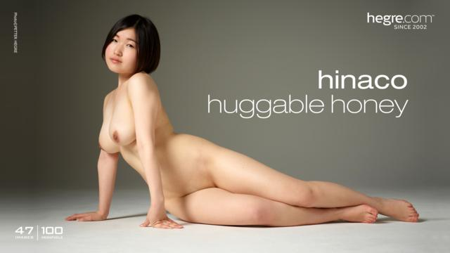 Hinaco huggable honey