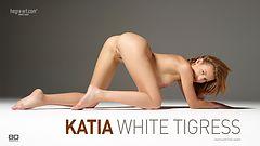 Katia Weiße Tigerin