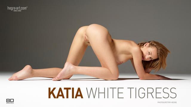 Katia tigresse blanche