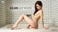Lilian Lily white
