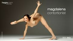 Magdalena contortionist