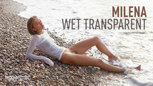Milena wet transparent