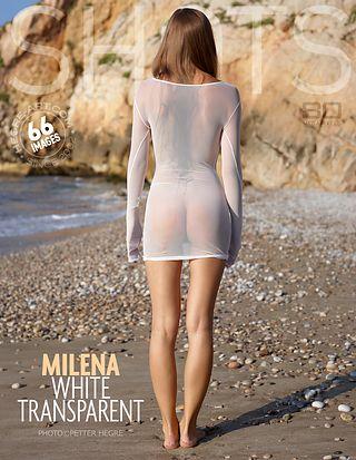 Milena white transparent