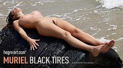 Muriel neumáticos