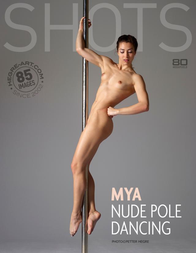 Sex Male Pole Dancer Nude Pics