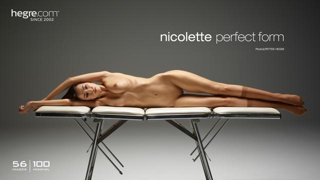Nicolette Perfekte Form