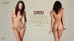 Orsi triángulo dorado