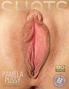 Pamela pussy