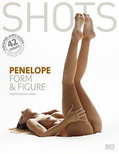 Penelope forme et figure