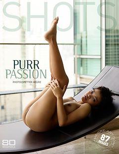 Purr passion