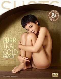 Purr Thai gold part1