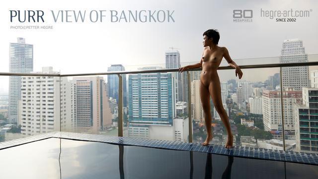 Purr view of Bangkok
