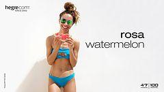 Rosa Wassermelone