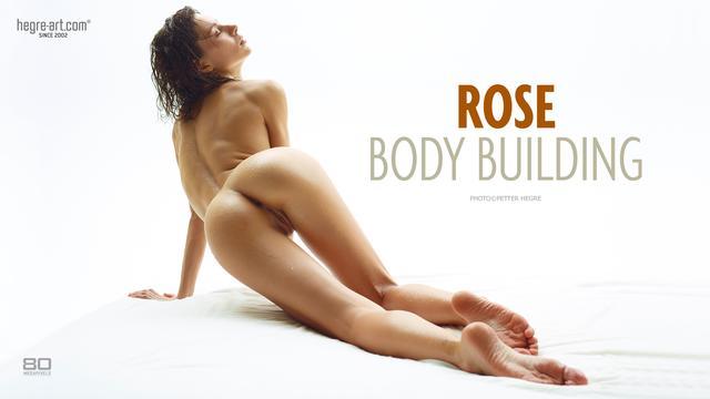 Rose body building