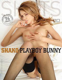 Shako Playboy bunny