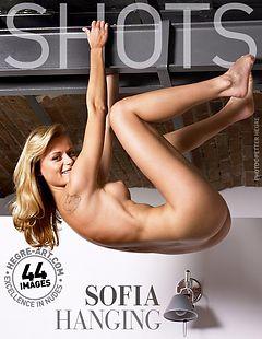Sofia hanging