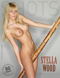 Stella bois
