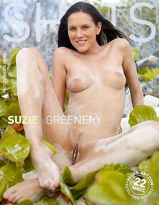Suzie greenery