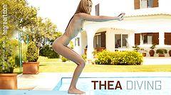 Thea diving board