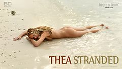 Thea stranded