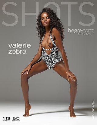 Valerie zebra