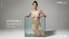 Victoria R Aquarium Partie 1