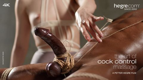 The Art of Cock Control Massage